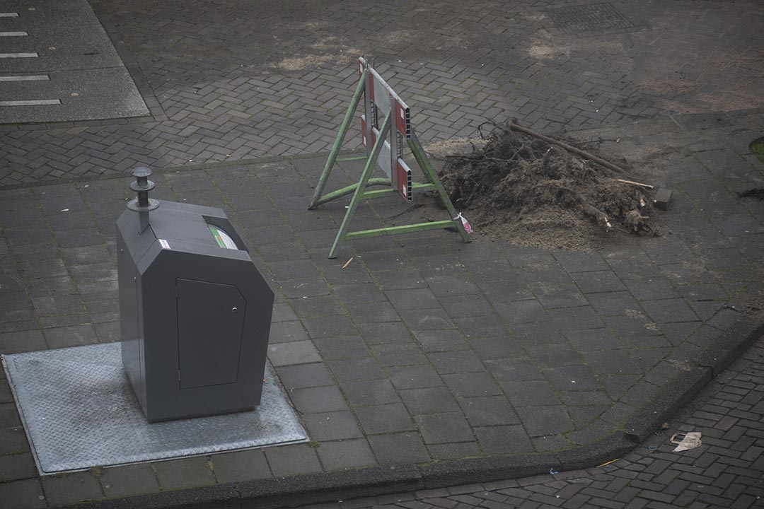 Bin with tree roots